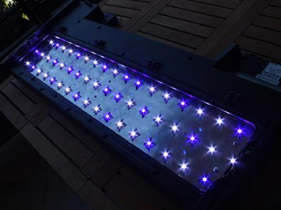 Plafoniere Led Per Acquario Marino : Red sea plafoniera a led acquarioitalia