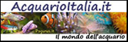 Banner AcquarioItalia.it